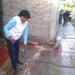 Los Molinos: Pobladora denuncia amedrentamiento por defender el agua
