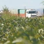 Con la lupa sobre Monsanto